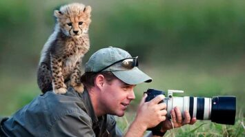 How to Become a Great Animal Photographer